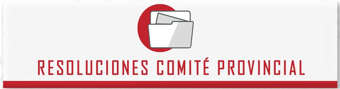 RESOLUCIONES-COMITE-PROVINCIAL